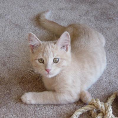Oliver...2.5 months